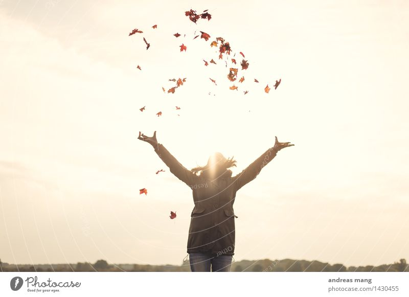 Nature Youth (Young adults) Young woman Leaf Joy Far-off places 18 - 30 years Adults Environment Life Autumn Movement Playing Happy Freedom Flying