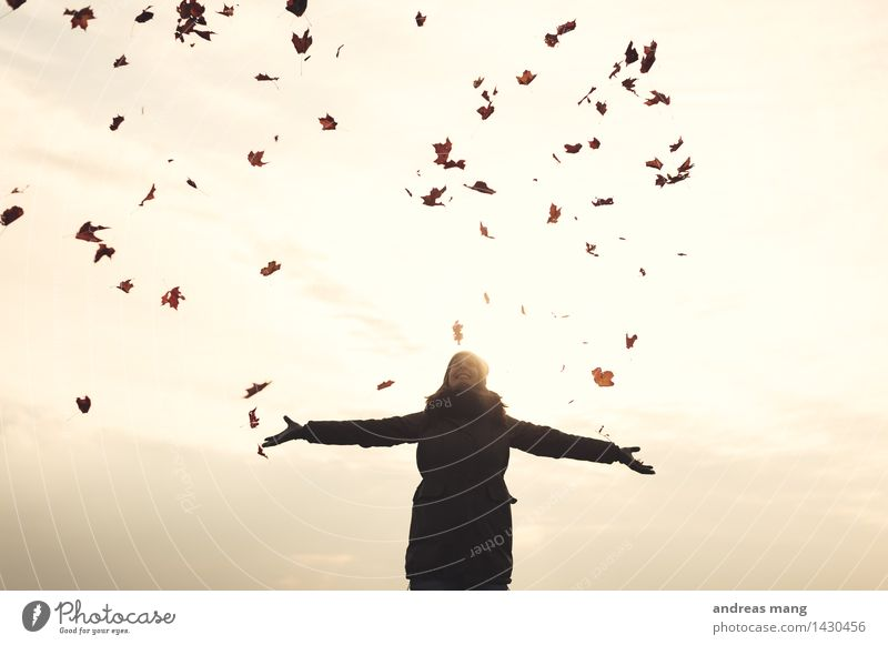 #313 / Autumn Young woman Youth (Young adults) Woman Adults Leaf Jacket Relaxation Catch Flying To enjoy Embrace Throw Free Happiness Happy Infinity Joy