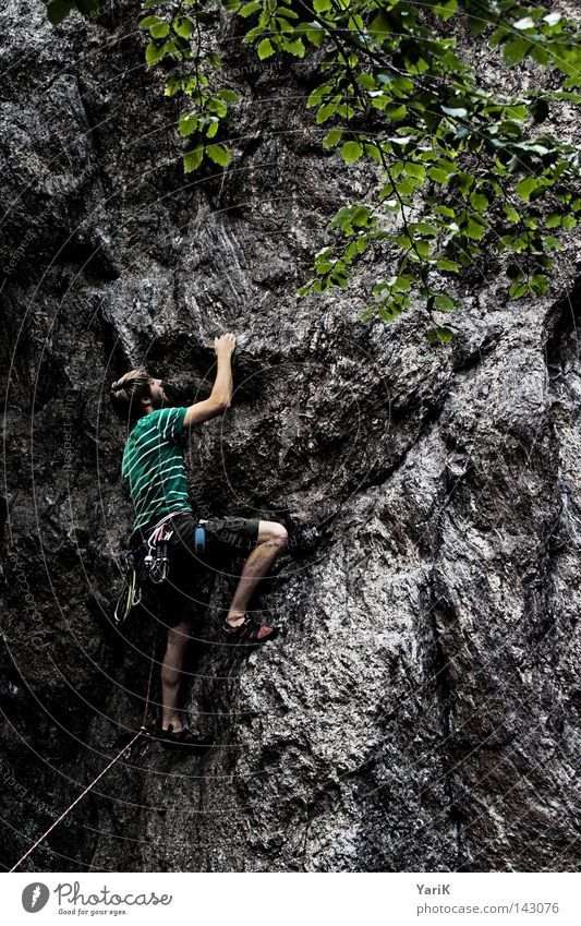Man Tree Green Blue Leaf Clouds Sports Playing Above Mountain Stone Warmth Legs Arm Rope Rock