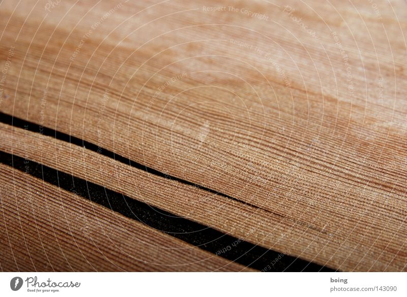 Wood has its own head Crack & Rip & Tear Column Broken Force Life Deep Elapse 2 Tectonic Old Furniture Anger Aggravation Leisure and hobbies Craft (trade)