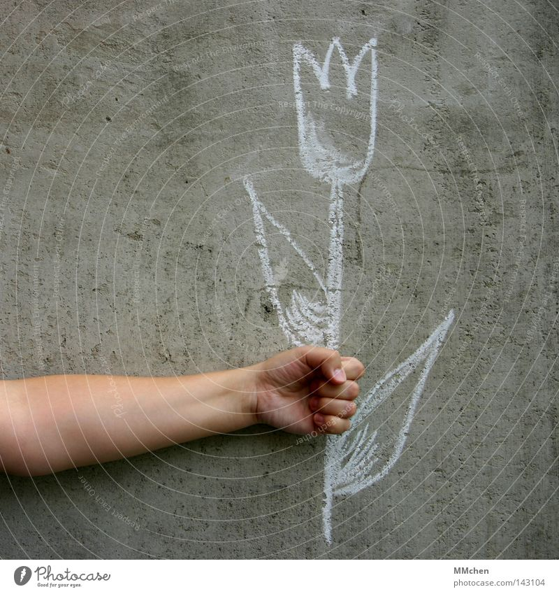 Hand Flower Wall (building) Arm Birthday Concrete Fingers To hold on Draw Netherlands Painting and drawing (object) Tulip Jubilee Grasp Chalk Amsterdam