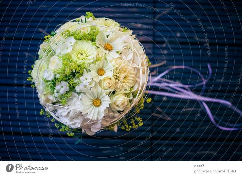 "wedding posy Elegant Joy Beautiful Event Feasts & Celebrations Wedding Flower Rose Blossom Together Happy Blue White Emotions Happiness Love Life ""flower"