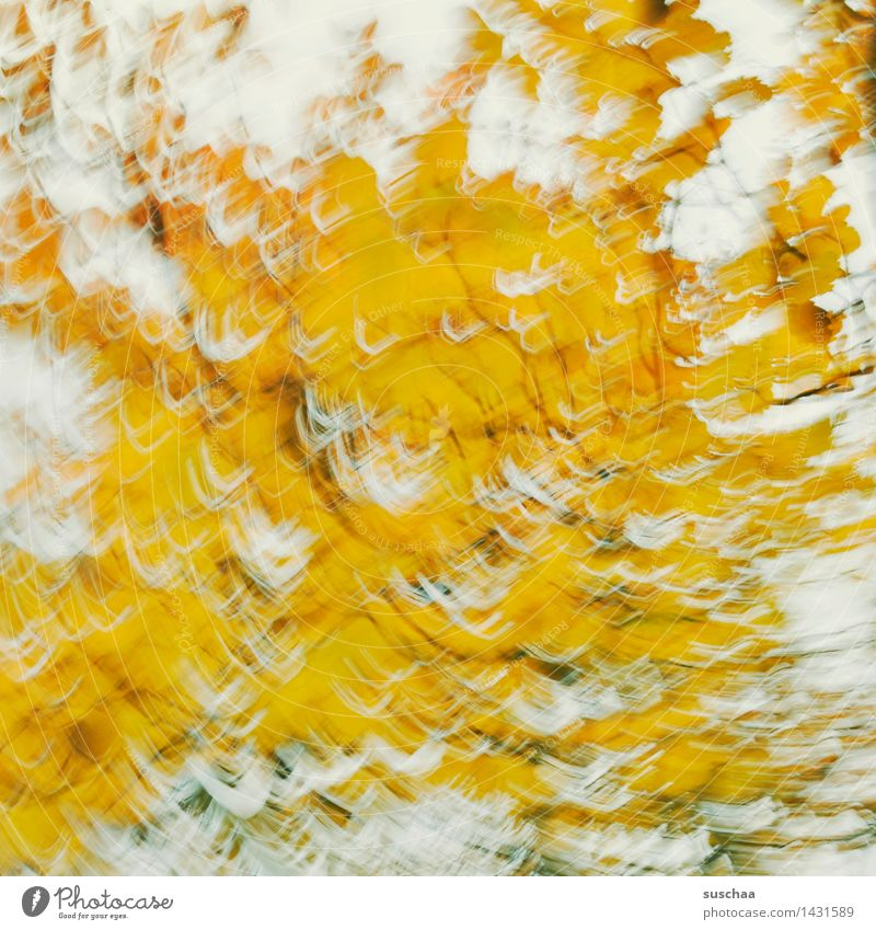 wischhhhhhh ... and away Abstract Yellow Movement Rotate Dynamics Exterior shot Leaf Tree Autumn Art