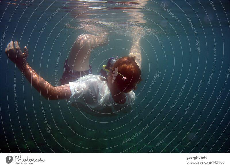 Water Ocean Lake Swimming & Bathing Speed Italy Dive Underwater photo Hover Aquatics Diver Mediterranean sea Snorkeling Snorkeler