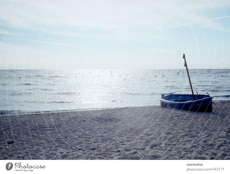 Water Vacation & Travel Ocean Beach Food Lake Horizon Watercraft Wait Fish Travel photography Net Baltic Sea Bay Navigation