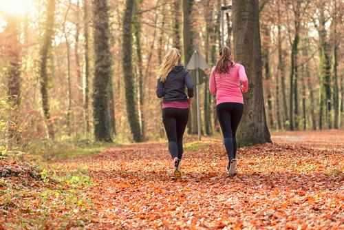 Two fit young woman jogging together Human being Woman Youth (Young adults) Leaf 18 - 30 years Forest Face Adults Autumn To talk Sports Happy Lifestyle