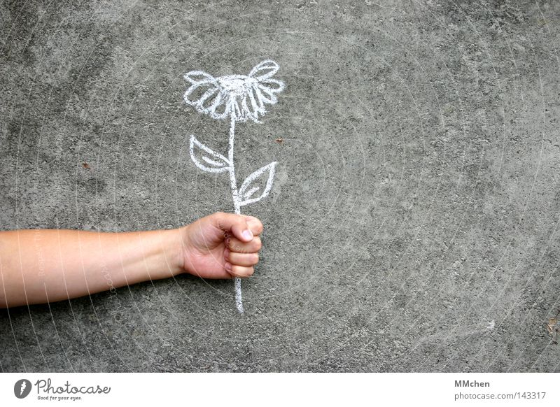 mauerBLÜMCHEN Flower Chalk Wall (building) Concrete Earmarked Painting and drawing (object) Arm Grasp To hold on Hand Fingers White Gray Congratulations Desire