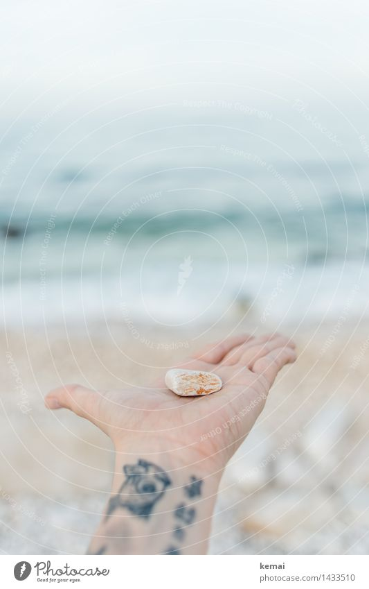 Human being Nature Vacation & Travel Beautiful Ocean Hand Calm Beach Environment Small Lifestyle Stone Bright Waves Authentic Esthetic