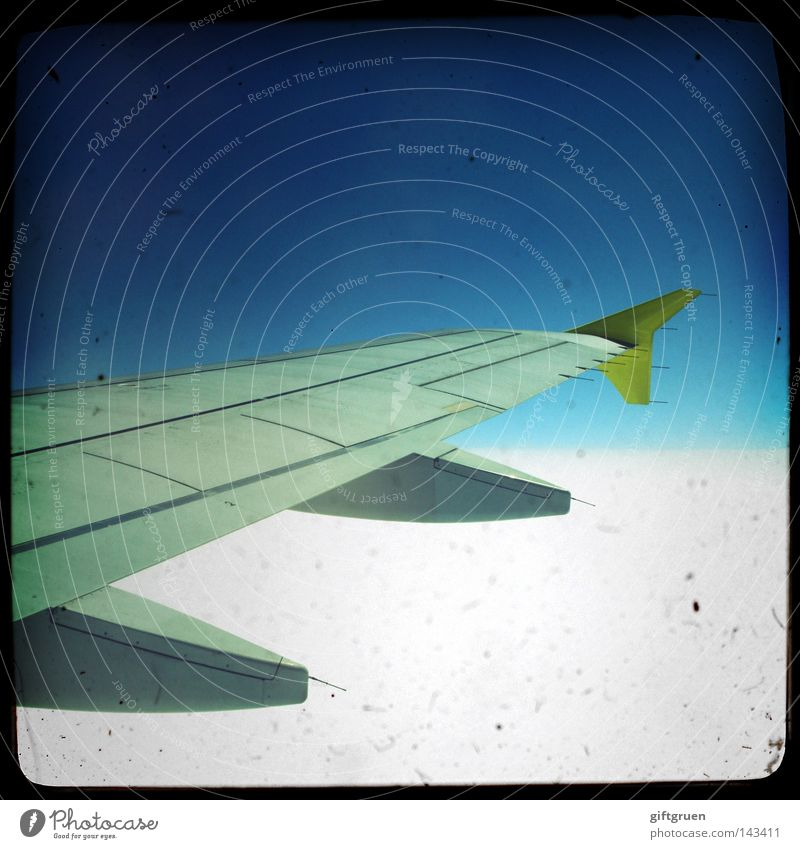 Sky Vacation & Travel Airplane Beginning Tall Trip Aviation Technology Level Wing Airport Airplane landing Hover Departure Pilot Passenger