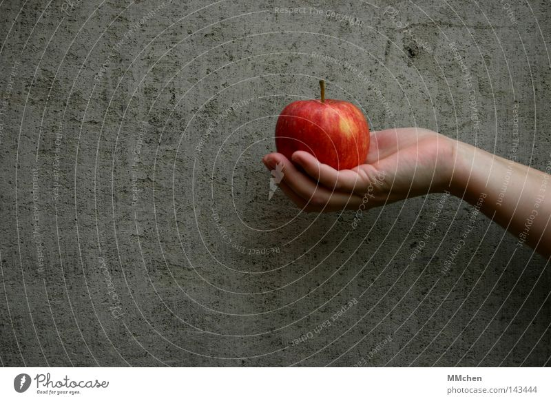 An apple a day.... Apple Hand Wall (building) Concrete Fruit Diet Healthy Red Crunchy Juicy Delicious Appetite Snow White Kitchen adam and eva