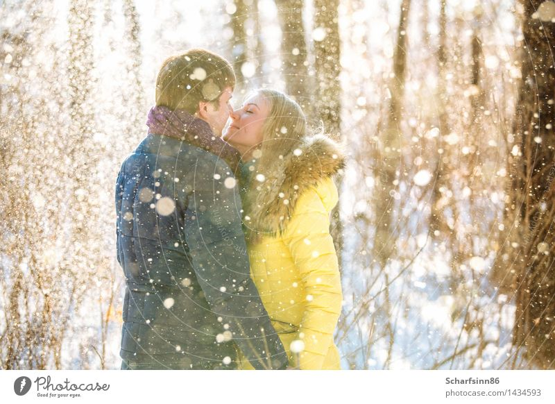 Loving couple in the winter woods. Lifestyle Trip Winter Snow Hiking Valentine's Day Masculine Feminine Young woman Youth (Young adults) Family & Relations