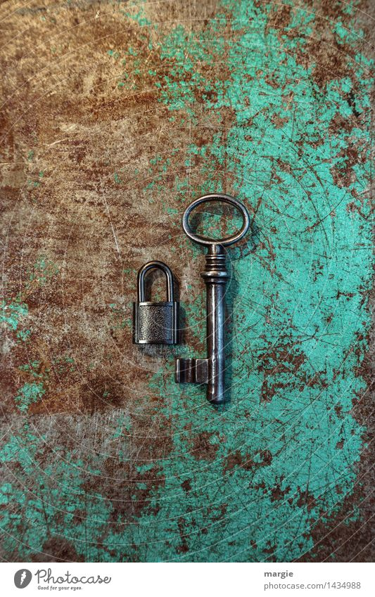 Unequal pair II Work and employment Profession Craftsperson Workplace Services Tool Technology Metal Lock Key Brown Green Safety Key service Key size