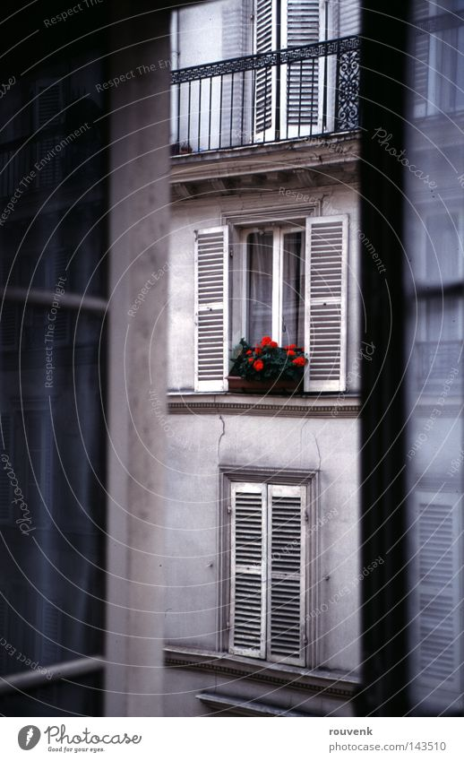 Flower Summer House (Residential Structure) Window Flat (apartment) Paris France Old building Houseplant