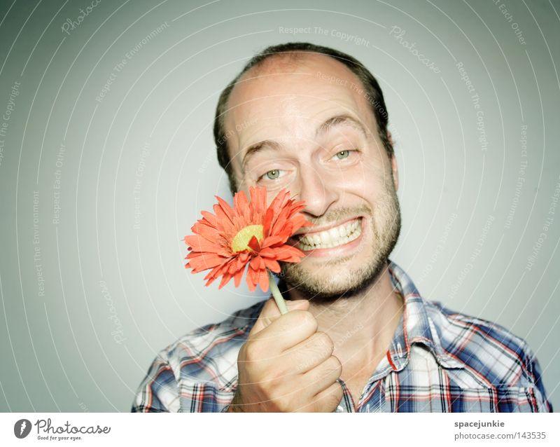 Flower for You Man Portrait photograph Friendliness Plant Hippie Gift Donate Joy Funny Grinning Laughter Garden Gardener Nature Valentine's Day