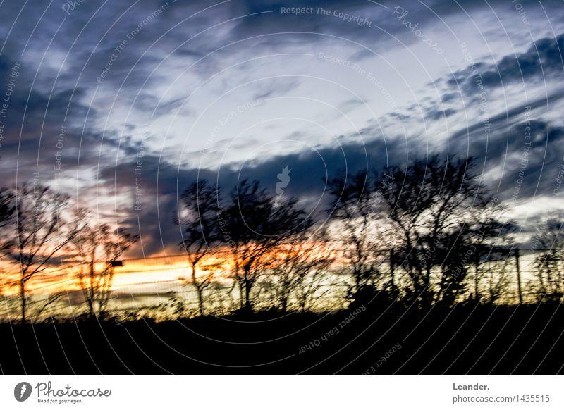 Sky Nature Blue Sun Tree Landscape Forest Black Environment Park Weather Wind Climate Uniqueness Storm Gale