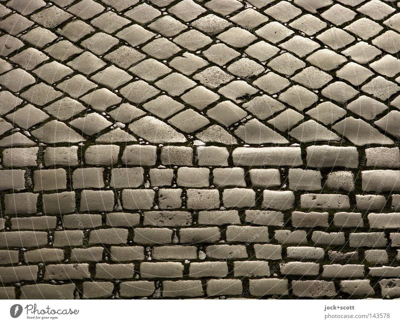 Head stone pavement Traffic infrastructure Street Many Part Deformation Seam Cobblestones Paving stone Undulating Three-dimensional Traffic lane Detail Abstract