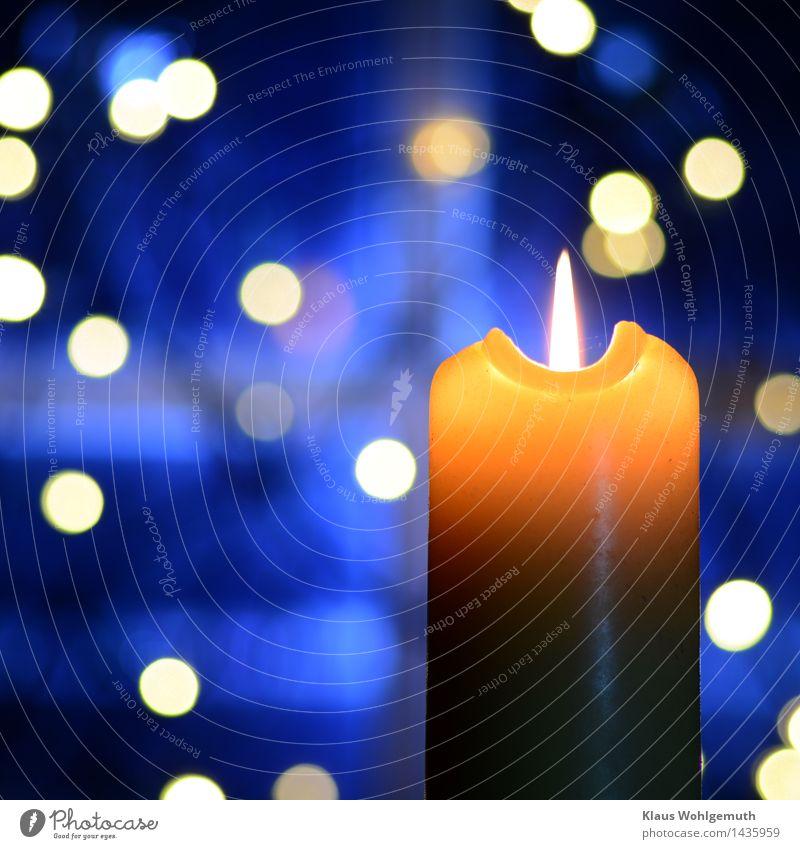 winter evening Harmonious Relaxation Meditation Christmas & Advent Illuminate Friendliness Blue Yellow Romance Candle Flame Pensive Interior shot Close-up