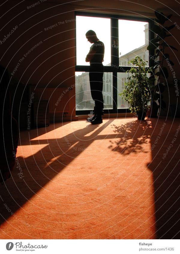 Human being Man Sun Window