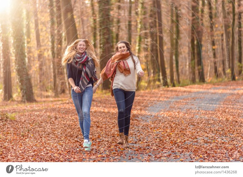 Two joyful women running through a park Human being Woman Nature Youth (Young adults) Sun Hand Leaf Joy 18 - 30 years Forest Face Adults Autumn Love