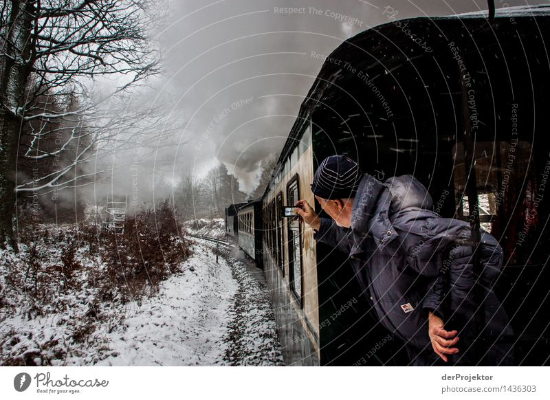 Nature Vacation & Travel Man Landscape Winter Environment Senior citizen Snow Snowfall Masculine Tourism Transport 60 years and older Island Trip Railroad