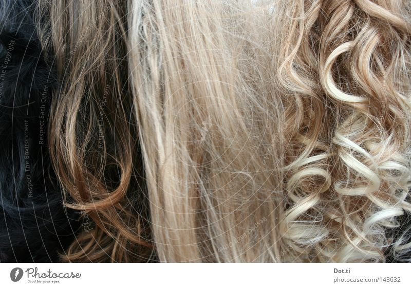 Beautiful Feminine Style Hair and hairstyles Brown Blonde Long Brunette False Curl Difference Long-haired Smoothness Embellish Accessory Strand of hair