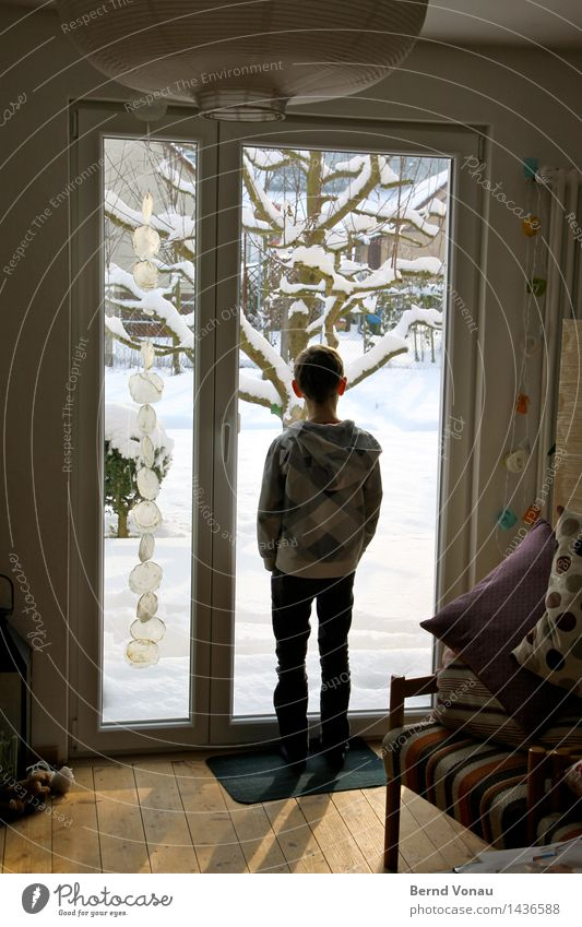 snow Human being Masculine Child Boy (child) Infancy 1 8 - 13 years Looking Stand Snow Winter House (Residential Structure) Window Terrace Bright Tree Garden