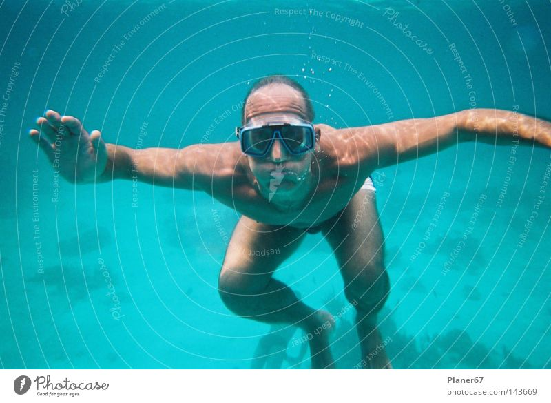 Man Water Ocean Joy Fear Dive Panic Caribbean Sea Atlantic Ocean Snorkeling