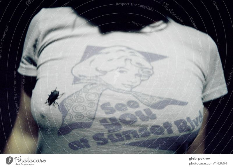bug. Clothing Sunset Woman T-shirt Bug Light Light (Natural Phenomenon) Street Hand Russia Siberia Human being tits pimps source of light lightning effect