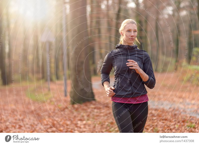 Pretty fit young woman jogging in woodland Diet Lifestyle Body Face Sports Jogging Woman Adults 1 Human being 18 - 30 years Youth (Young adults) Nature Autumn