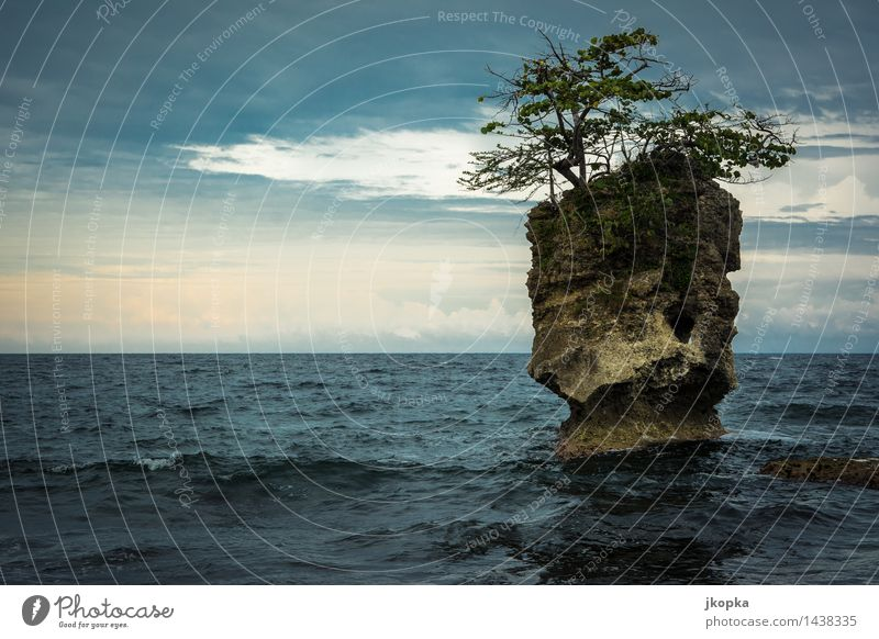 Island of Nature Far-off places Freedom Ocean Waves Landscape Elements Water Sky Clouds Sunlight Weather Bad weather Tree Rock Coast Reef Caribbean Sea