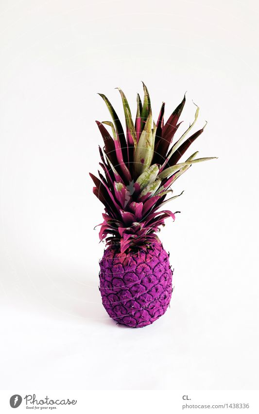 Colour Exceptional Food Fruit Esthetic Nutrition Creativity Uniqueness Violet Inspiration Whimsical Innovative Pineapple