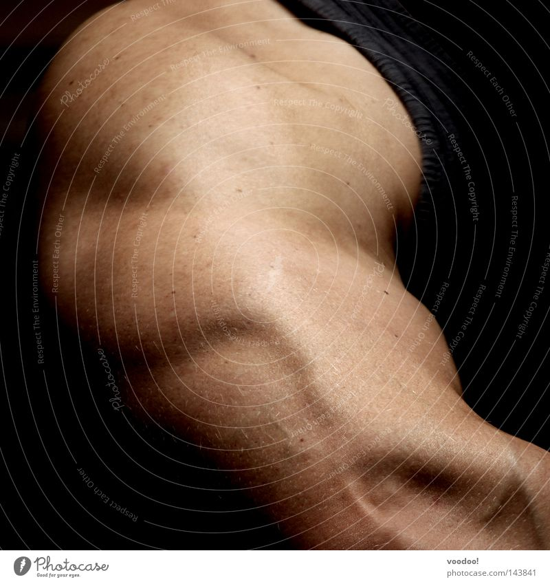 Musculus triceps brachii Musculature Triceps Arm Power Force Sports Training Posture Skin Healthy Anatomy Detail Section of image Partially visible Man's body