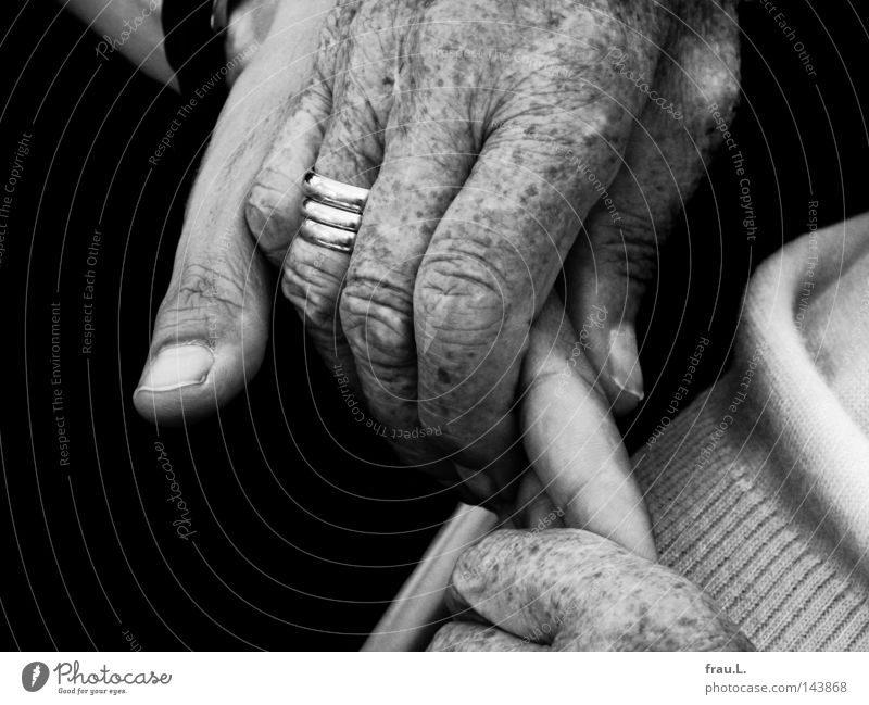 hands Hand Man Woman Senior citizen Old Trust Familiar Protection To hold on Ring Wrinkles To console Mother Communicate Intimacy Near Love Caresses Affection