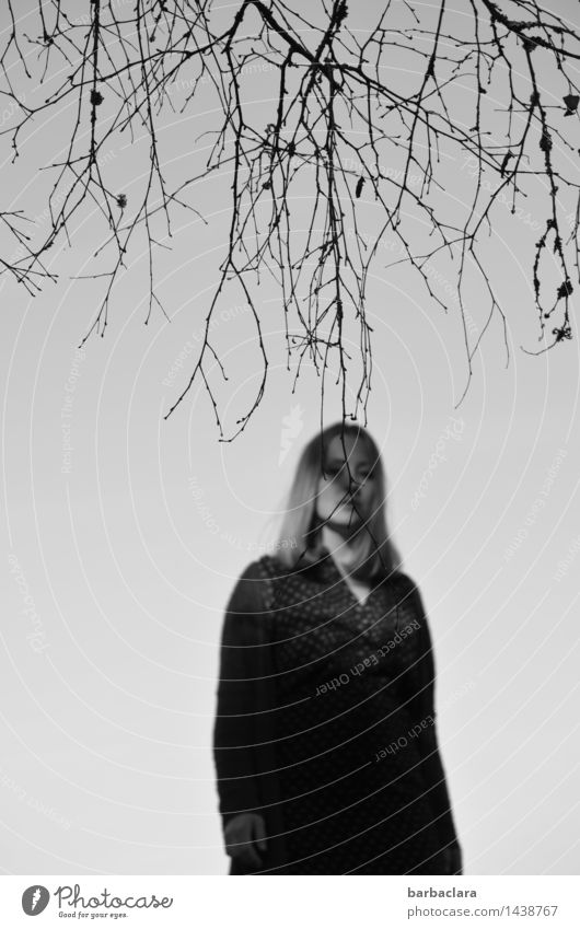 Human being Woman Sky Nature Tree Loneliness Leaf Adults Emotions Feminine Gray Moody Air Gloomy Blonde Stand