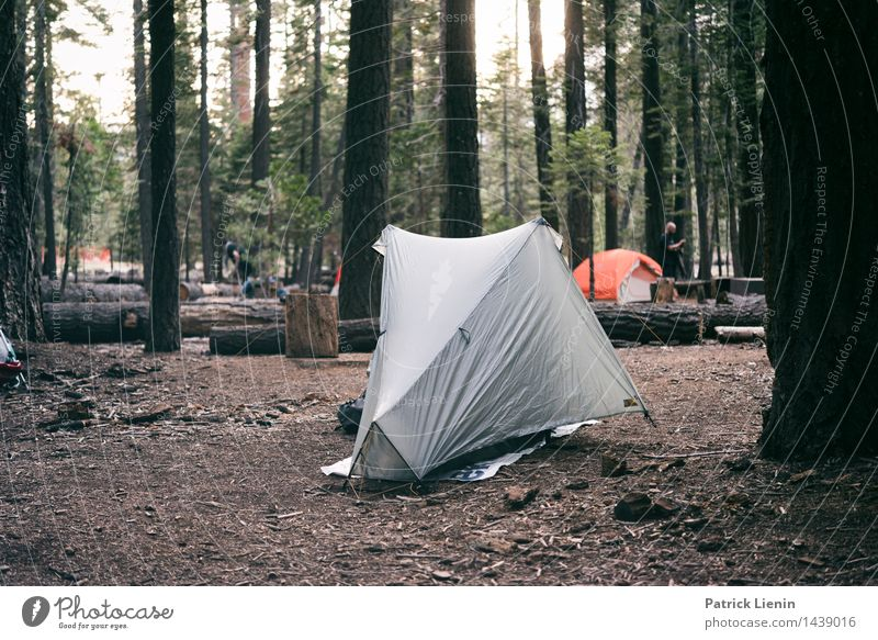 Yosemite Valley Camping Lifestyle Wellness Harmonious Well-being Contentment Senses Relaxation Calm Vacation & Travel Tourism Trip Adventure Far-off places
