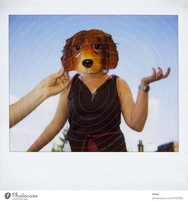 Hand Sky Joy Dog Together Polaroid Horizon Communicate Posture Dress Mask Stop Carnival To hold on Balcony Idea