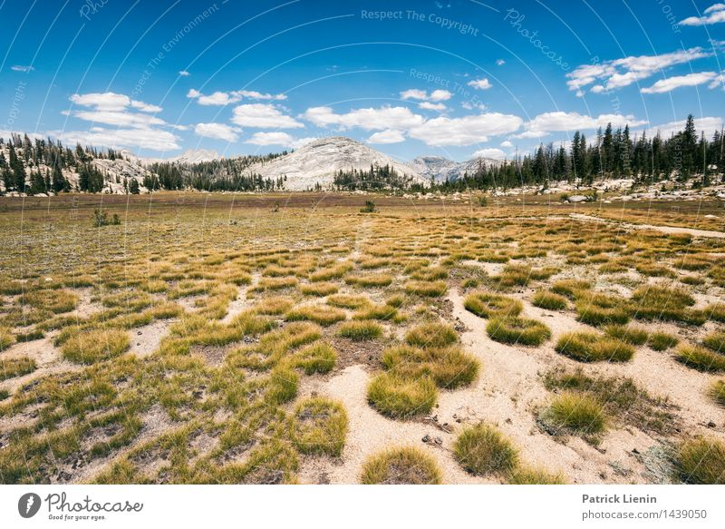 High Sierra Lifestyle Wellness Contentment Senses Relaxation Calm Vacation & Travel Trip Adventure Far-off places Freedom Summer Mountain Hiking Environment