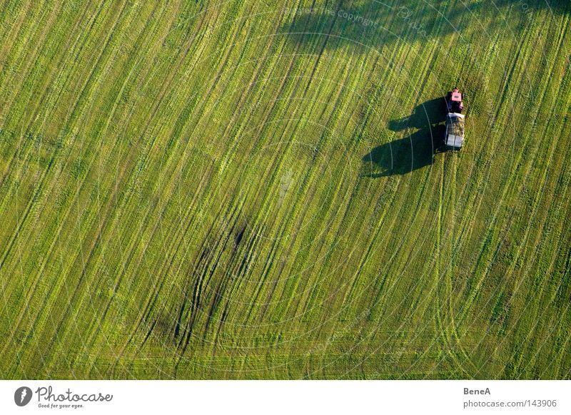 Mr. Tractor Driver 2 Agriculture Utility vehicle Vehicle Field Meadow Green Line Symmetry Geometry Work and employment Generator Shadow Evening sun Red