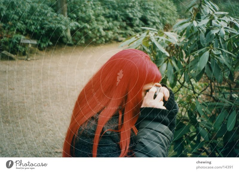 me Red Green Woman Hair and hairstyles Plant Lanes & trails one person