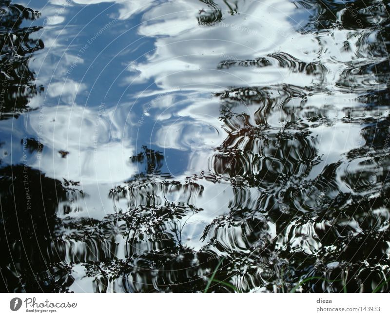 Water Sky Movement Waves Wind Mirror Pond Tuscany The deep Italy