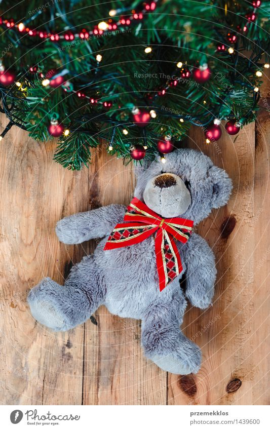 Teddy bear under the Christmas tree Christmas & Advent Tree Wood Decoration Gift Toys Tradition Story Home Pine Vertical December Bear Guest