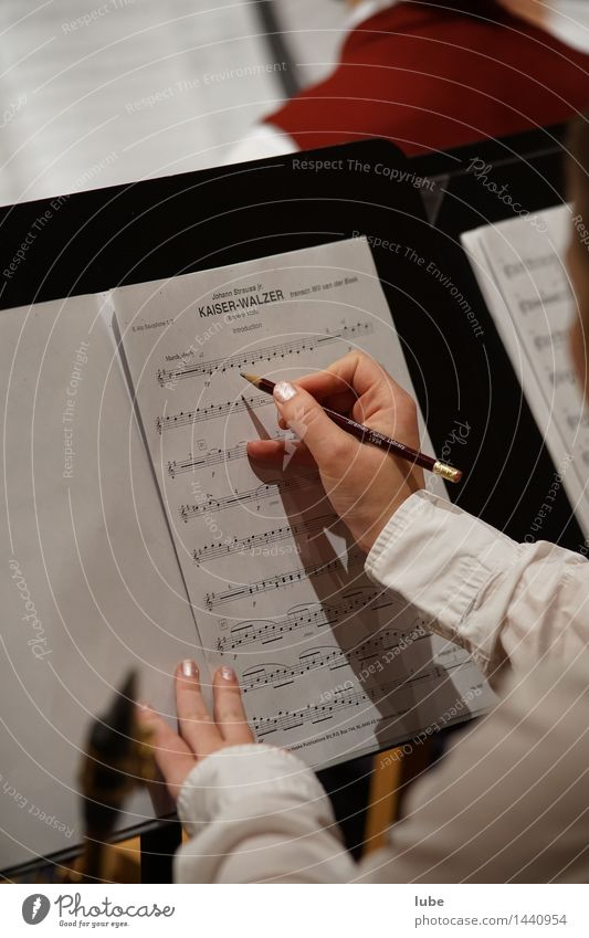 emperor's waltz Artist Culture Music Concert Musician Write notation Musical notes Sheet music Pencil emperor waltz johann ostrich Colour photo