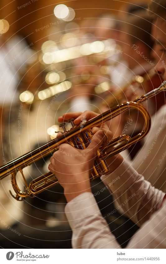 Art Gold Music Concert - a Royalty Free Stock Photo from Photocase