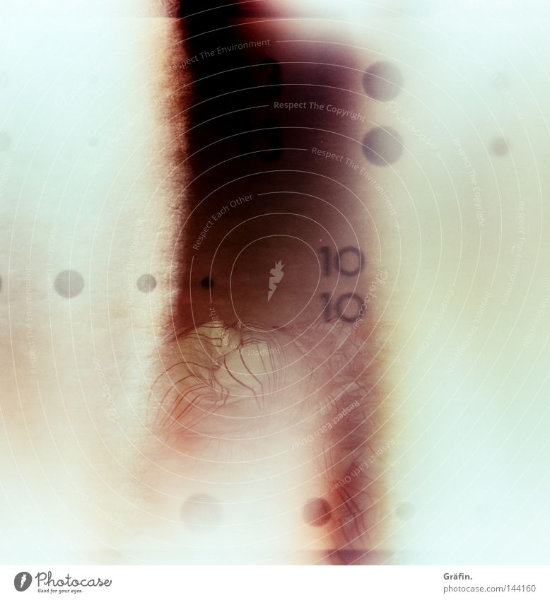 Holga Bed Violet Point Creativity Blanket Accident Unclear Bedroom Bedclothes Duvet Medium format Overexposure Shaft of light Film Disaster