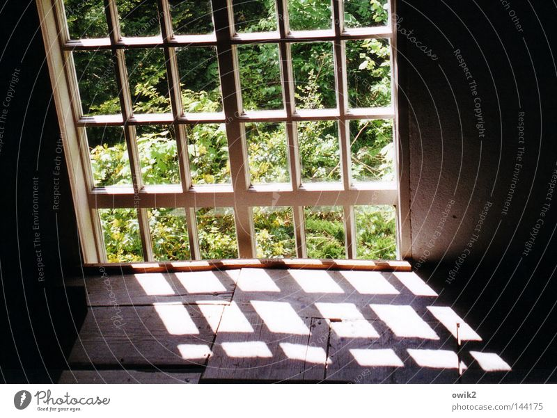 bit by bit Calm Summer Garden Nature Landscape Leaf Church Architecture Window Wood Old Think Sharp-edged Simple Historic Green Hope Transience Shaft of light