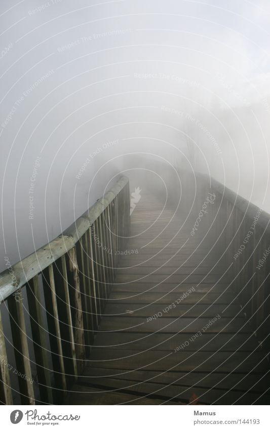 Water Clouds Far-off places Dark Wood Lanes & trails Lake Warmth Fog Wet Bridge Physics Smoke Footbridge Doomed Ambiguous