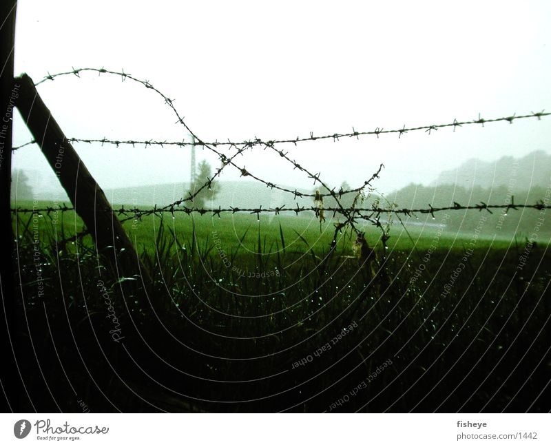 barbed wire Barbed wire Fence Wet Rope Fog Pole