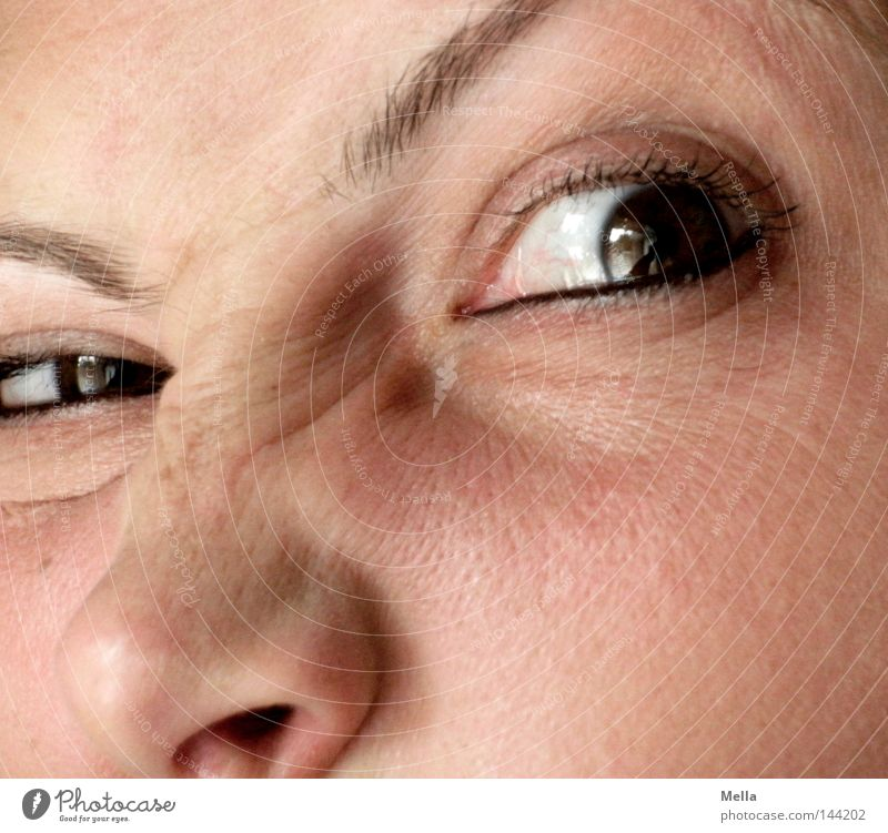 Woman Human being Eyes Feminine Adults Nose Crazy Wrinkle Anger Aggravation Grimace Eyebrow Avaricious Envy Grouchy