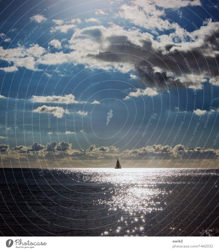 Lonely sailboat Far-off places Freedom Environment Nature Water Sky Clouds Horizon Climate Beautiful weather Baltic Sea Sailboat Movement Glittering Illuminate