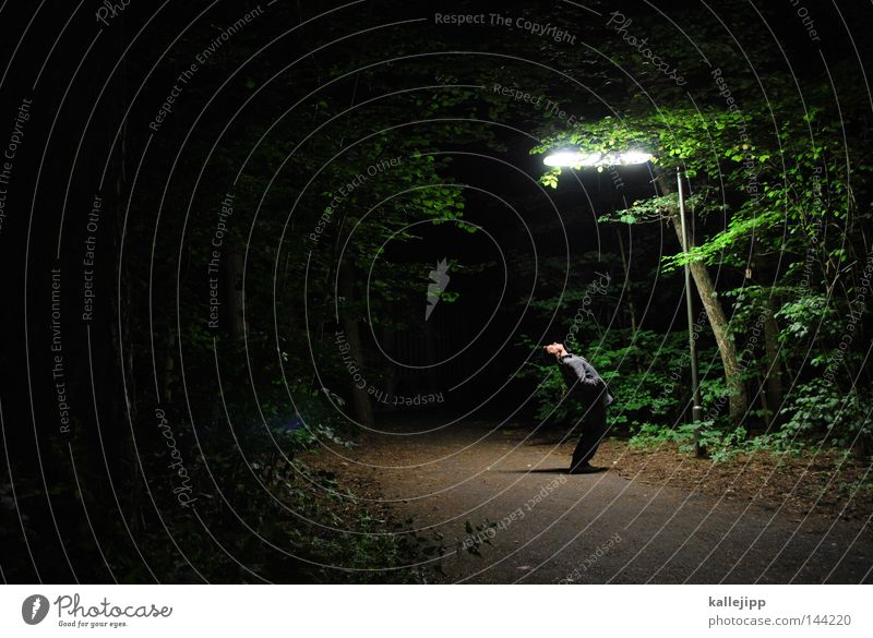 hi mado Lantern Lamp Street lighting Night Forest Footpath Edge of the forest Pedestrian Man Human being Doomed Lanes & trails Sacrifice Criminality Crime scene